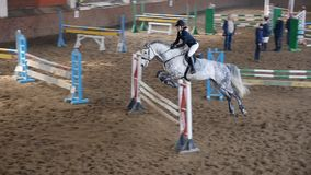 Horse girl rider jump over obstacle in slow motion. SLOW MOTION, CLOSE UP: Horse girl riding strong white horse jumping the fence in sandy parkour dressage arena stock video