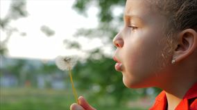 Slow Motion Close-Up Shot of Cute Little Girl Carefree Blowing a Dandelion Outdoors on a Sunset. Concept of Happy stock video