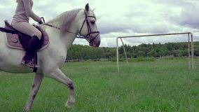 SLOW MOTION CLOSE UP:  A white strong stallion moves trotting at the training area. A rider girl is sitting on top of a horse. Cloudy summer day stock video footage