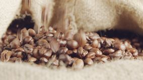 Slow motion of coffee beans falling into a burlap sack. Slow motion of coffee beans falling into a large burlap sack stock video