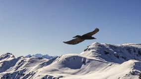 Slow motion of flying eagle, parallax animation. stock footage