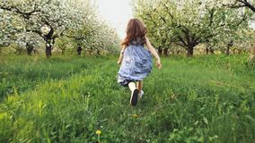 Little girl runs through a flowering garden