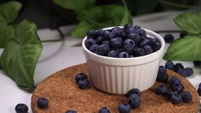 Fresh blueberries falling in white bowl. cinematic view with green plants in the background. Slow motion footage, delicious blueberries falling in white bowl stock footage