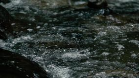 Slow motion footage. Flowing water over stones in mountines river stock footage