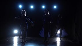 Silhouettes of ballet dancer over spotlights at studio. Slow motion. Slow motion of four experienced charming ballerinas in light dresses dancing elements of stock video
