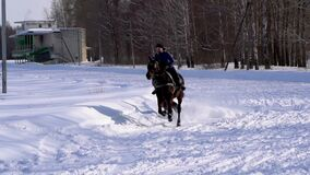 A girl galloping on a horse at a gallop. A horse is dragging a snowboarder guy on a rope. A snowboarder rides on a snowboard in sn. SLOW MOTION : A girl stock video footage