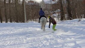 SLOW MOTION : A girl galloping on a horse at a gallop. A horse is dragging a snowboarder guy on a rope. A snowboarder rides on a snowboard in snowdrifts. Girl stock video footage