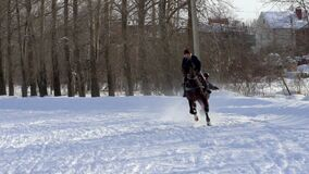 SLOW MOTION : A girl galloping on a horse at a gallop. A horse is dragging a snowboarder guy on a rope. A snowboarder rides on a snowboard in snowdrifts. Girl stock footage