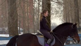 Slow motion: a girl jockey fulfills riding on a horse. It performs a variety of sports movement and jumping. Training. Takes place in a small special paddock. A stock video footage