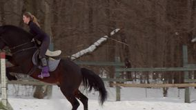 Slow motion: a girl jockey fulfills riding on a horse. It performs a variety of sports movement and jumping. Training. Takes place in a small special paddock. A stock footage