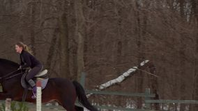 Slow motion: a girl jockey fulfills riding on a horse. It performs a variety of sports movement and jumping. Training. Takes place in a small special paddock. A stock video