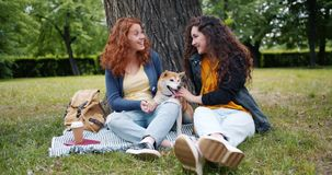 Slow motion of girls sitting on lawn in park with cute dog talking having fun stock video