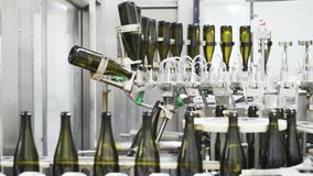 Slow-motion, glass bottles on the automatic conveyor line at the champagne or wine factory. Plant for bottling alcoholic. Beverages stock video