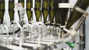 Slow-motion, glass bottles on the automatic conveyor line at the champagne or wine factory. Plant for bottling alcoholic. Beverages stock video footage