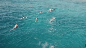 Slow motion A group of tourists snorkeling swims and bathes in the ocean near the yacht. With a mask and snorkel and stock video