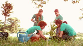 In slow motion happy friends gardening for the community stock video footage