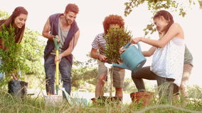 In slow motion happy friends gardening for the community stock video