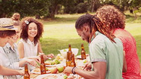 In slow motion happy friends in the park having lunch stock video footage
