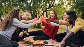 Slow motion of happy friends talking and laughing then toasting and clanging glasses sitting on blanket on picnic on. Slow motion of happy young friends talking stock video