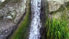 Slow motion hd video of cascade water in Vorontsov park, Crimea, Alupka stock video