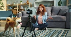 Slow motion of joyful blogger dog owner recording video using modern camera. Slow motion of joyful blogger female dog owner recording video using modern camera stock video