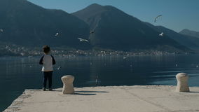 Slow motion little boy standing on pier, throwing rocks into lake water stock footage