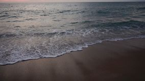 Slow motion painter looking at evening sea horizon. stock video footage