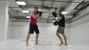 Power blow to boxing paw. Strong tattooed athlete in sports clothing training on boxing paws with partner. Slow motion: Power blow to boxing paw. Strong tattooed stock video footage