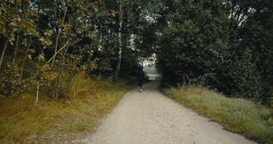 Slow motion runner on dark autumn forest road. Drone back view. Motivated lifestyle athlete going through hard moments. Slow motion runner on dark forest road stock video footage