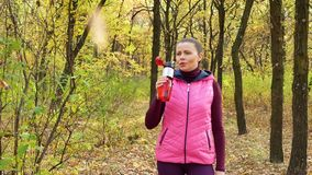 Slow motion Running - woman runner jogging on autumn forest path. Fit female sport fitness model athlete trail running training. R. Unner gril in sportswear stock footage