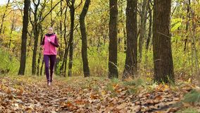 Slow motion Running - woman runner jogging on autumn forest path. Fit female sport fitness model athlete trail running training. R. Unner gril in sportswear stock video