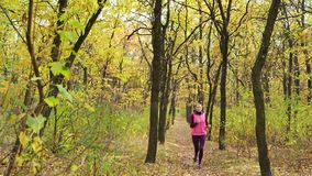 Slow motion Running - woman runner jogging on autumn forest path. Fit female sport fitness model athlete trail running training. Runner girl in sportswear stock footage