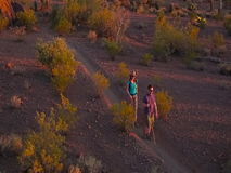 Slow Motion Shot of Desert Hikers in Late Afternoon Golden Light stock footage