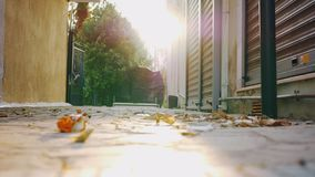 Dry autumn leaves dancing in the wind. Slow motion shot of dry leaves dancing in the wind in the alleyway between the houses. Autumn is coming stock video footage