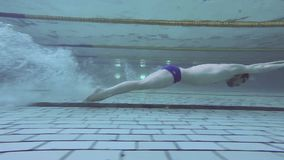 Slow-motion shot of a professional male swimmer underwater. Professional swimmer in the pool swims underwater, making movements butterfly stock footage