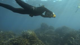 Using a sea scooter above corals. A slow motion shot of two divers using scooters above the corals stock video