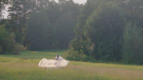 Woman Dancing In Plastic In Nature. Slow Motion Shot Of A Young Woman Dancing In Plastic Foil On A Green Meadow At Sunset stock footage