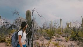 Slow motion side view beautiful young tourist woman hiking along incredible cactus desert national park in Arizona USA.