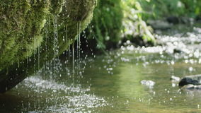 Slow motion of spring waterfall dribbling from moss