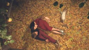 A young couple with a dog are photographed themselves among the yellow leaves. Slow motion. Top view. Evening. The guy and the girl are sitting among the yellow stock video footage
