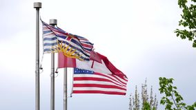 Slow motion of various world flags flying on flagpoles. In a cloudy sky stock footage