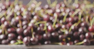 Close-up of a wet red ripe juicy cherries on a tray of steel. Changing focus of berries background. Drops of water on. Slow motion video with changing focus of a stock footage