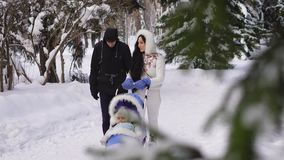 Slow-motion video of a couple with a child walks through the snow park. A man wearing a black jacket, dark blue trousers stock video