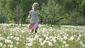 Slow motion video: little girl are running around in the field of dandelions at sunset. Happy childhood, good time. stock footage