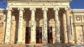 Slow Motion Video Of Pigeons In Flight Near The Romanian Athenaeum stock video footage