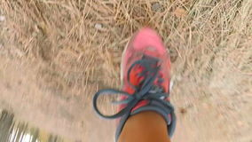 Slow motion view from camera attached to female leg running in forest stock video footage