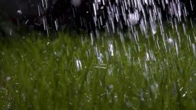 Slow motion watering the grass with water stock video footage
