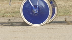 SLOW MOTION: Wheels and horse legs on a track (close up)
