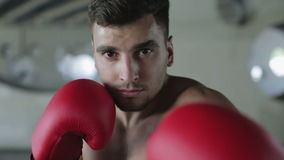 Slow motion. Young boxer with a confident eyes is waiting the fight. stock video