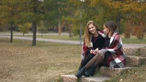Two girls in an autumn park. Slow motion. Young girls are sitting on a stone in the park and talking cheerfully stock footage